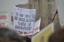 protest anticip 14 martie 2013_07